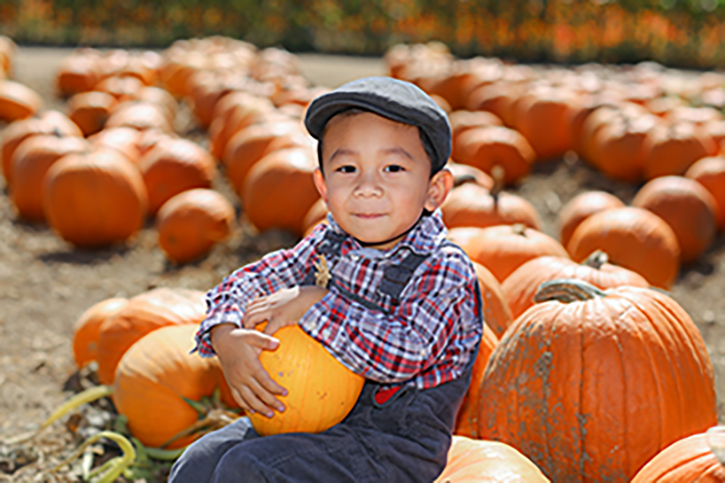 boy in overalls and hat sitting in a pumpkin patch holding a pumpkin