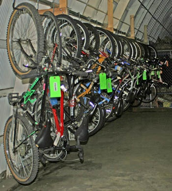 Bicycles bound for auction
