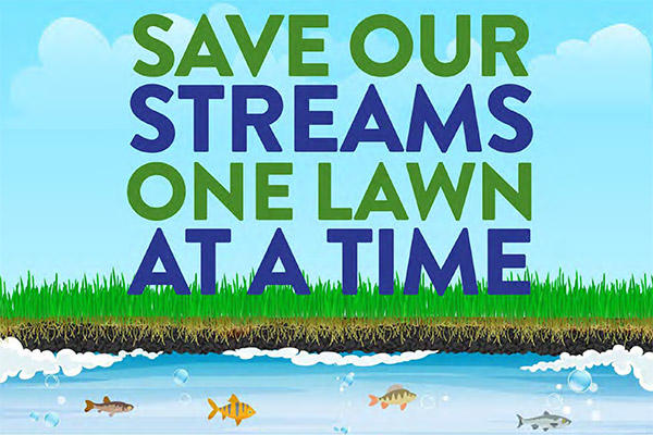 Save our streams, one lawn at a time