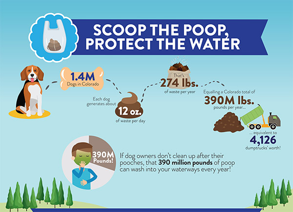 Scoop the poop, protect the water